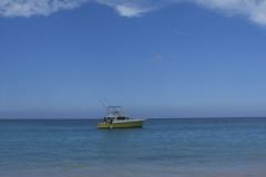 strand-naehe-barcelo-dominican-beach_4073