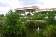 paradisus-palma-real-gartenanlage_4292