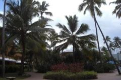 barcelo-dominican-beach-hotelgebaeude_3103