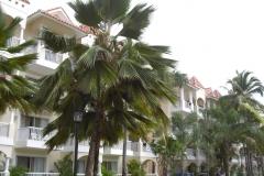 barcelo-punta-cana-hotelgebaeude_2399