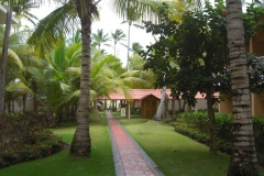 grand-palladium-palace-bungalows_3469
