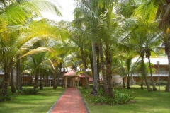 grand-palladium-palace-bungalows_3455