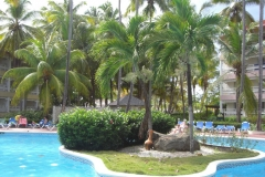 carabela-beach-resort-poolbereich_3309