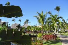 tropical-princess-beach-resort_0378