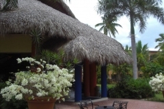 barcelo-dominican-beach-allgemein_3070