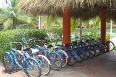 barcelo-dominican-beach-allgemein_3072