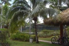 barcelo-dominican-beach-allgemein_3073