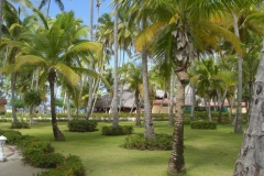 carabela-beach-resort-allgemein_3253