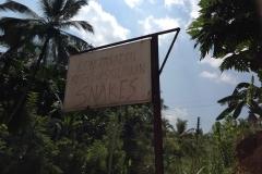 Snake_Farm-Weligama-004