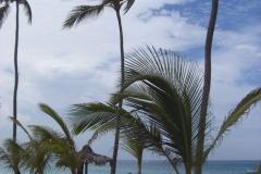 barcelo-punta-cana-strandbereich_2475