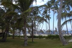 barcelo-dominican-beach-strandbereich_3199