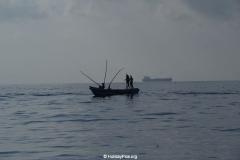 Whale & Dolphin Watching Mirissa Bach
