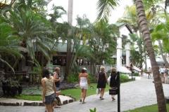 costa-coral-resort017