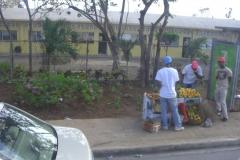 dominikanische-republik_290