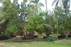 barcelo-dominican-beach-hotelgebaeude_3113