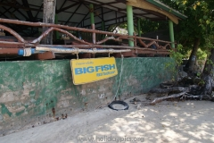 Big Fish Resort Ko Tao