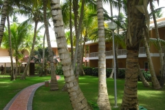 grand-palladium-palace-bungalows_3460