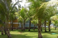 grand-palladium-punta-cana-bungalows_3682