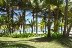 club-hotel-riu-bambu-strand_0833