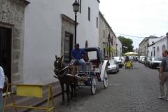 calle_de_las_damas_167