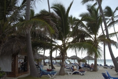 occidental-grand-punta-cana-strandbereich_2902