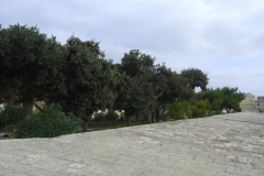 Malta_Valatta_014