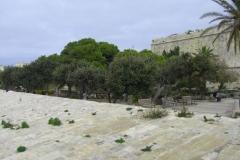 Malta_Valatta_020